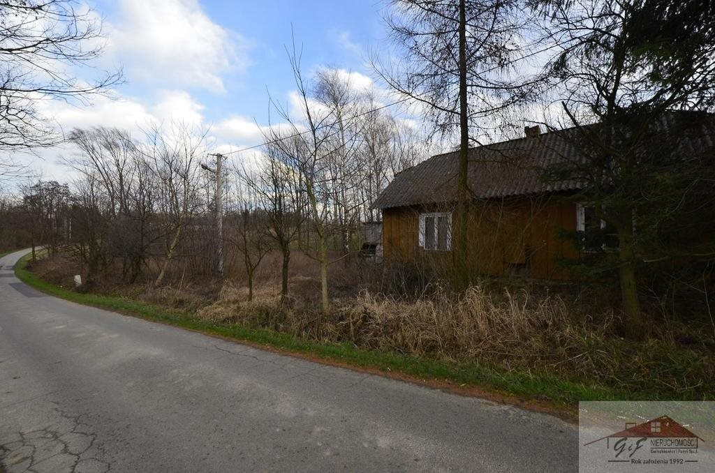 Dom na sprzedaż Rzeplin  60m2 Foto 3