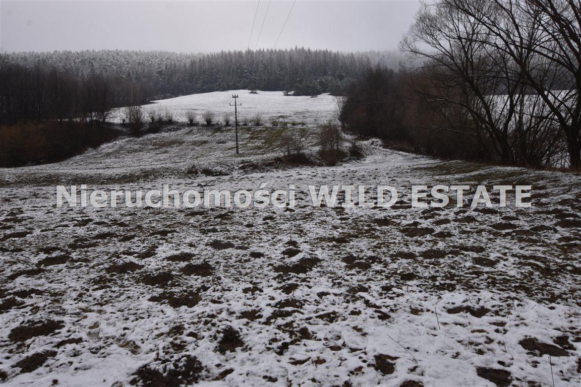 Działka rolna na sprzedaż Olszanica, Paszowa  5376m2 Foto 1