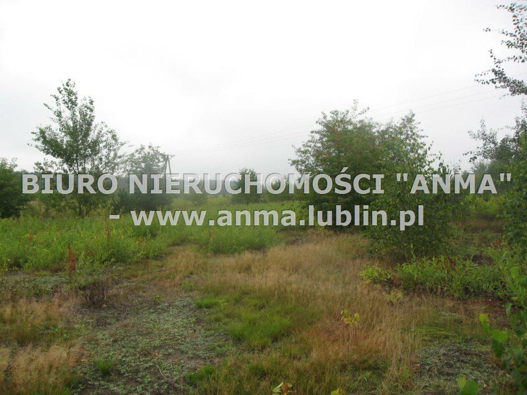 Działka budowlana na sprzedaż Kazimierz Dolny  5900m2 Foto 2