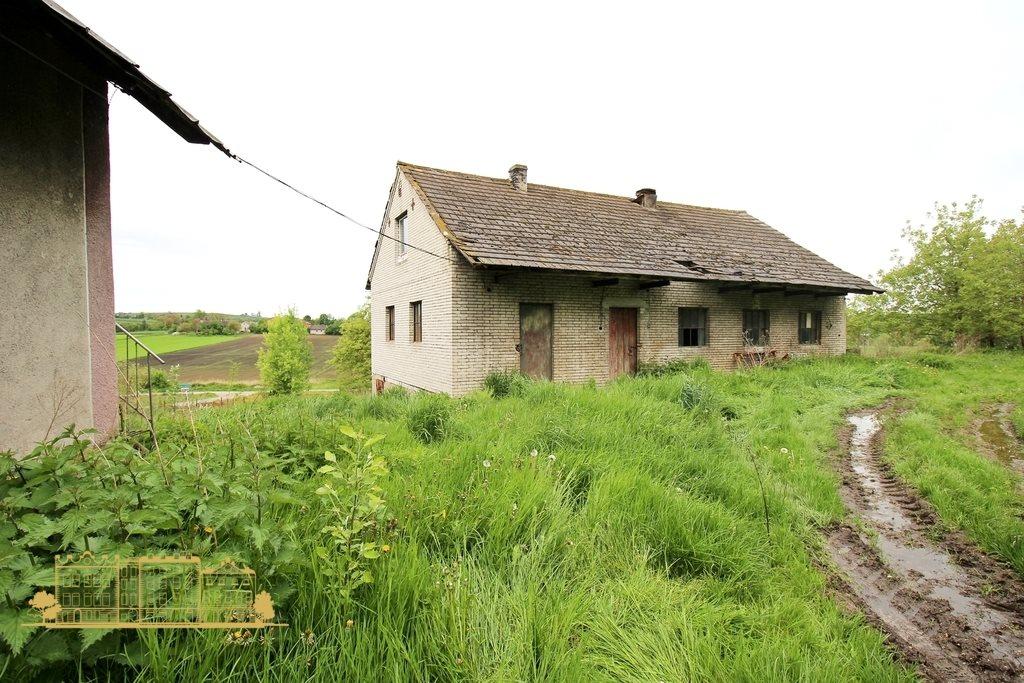 Działka rolna na sprzedaż Tempoczów-Kolonia  23000m2 Foto 4