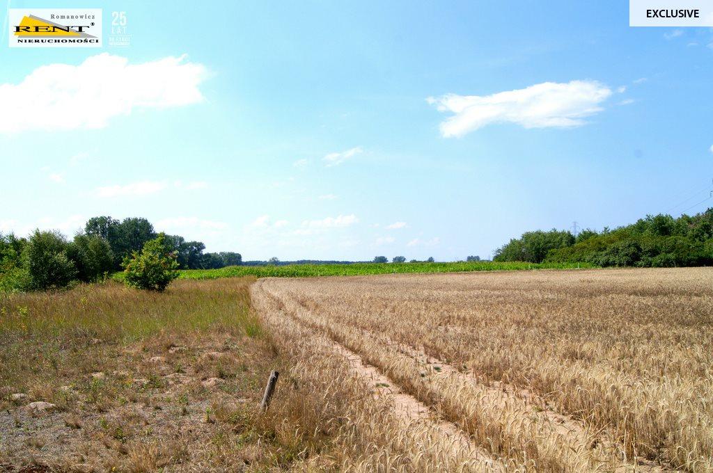 Działka rolna na sprzedaż Kobylanka  3001m2 Foto 4