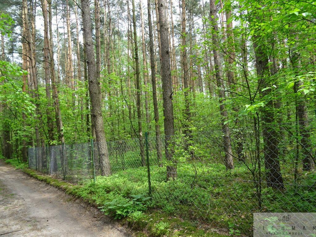 Działka leśna z prawem budowy na sprzedaż Kwiatkowice-Las  2420m2 Foto 8