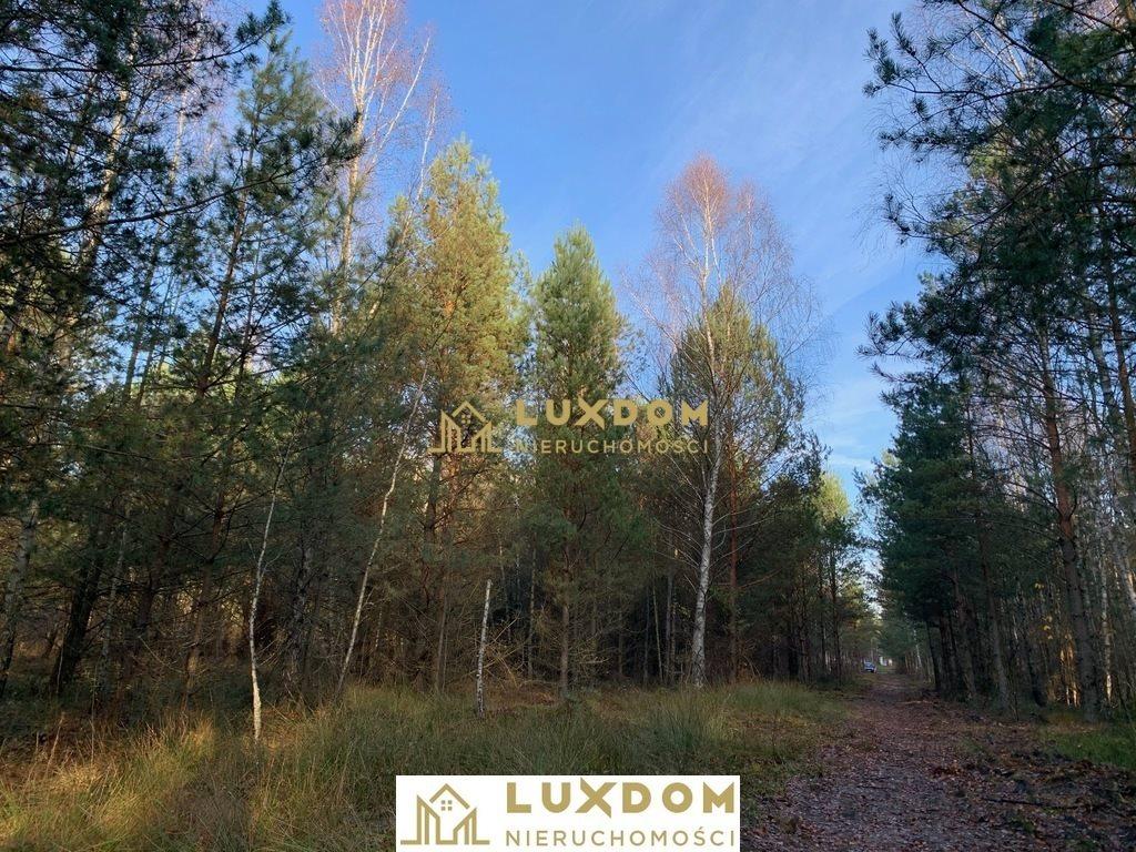 Działka leśna z prawem budowy na sprzedaż Jatne  1120m2 Foto 1