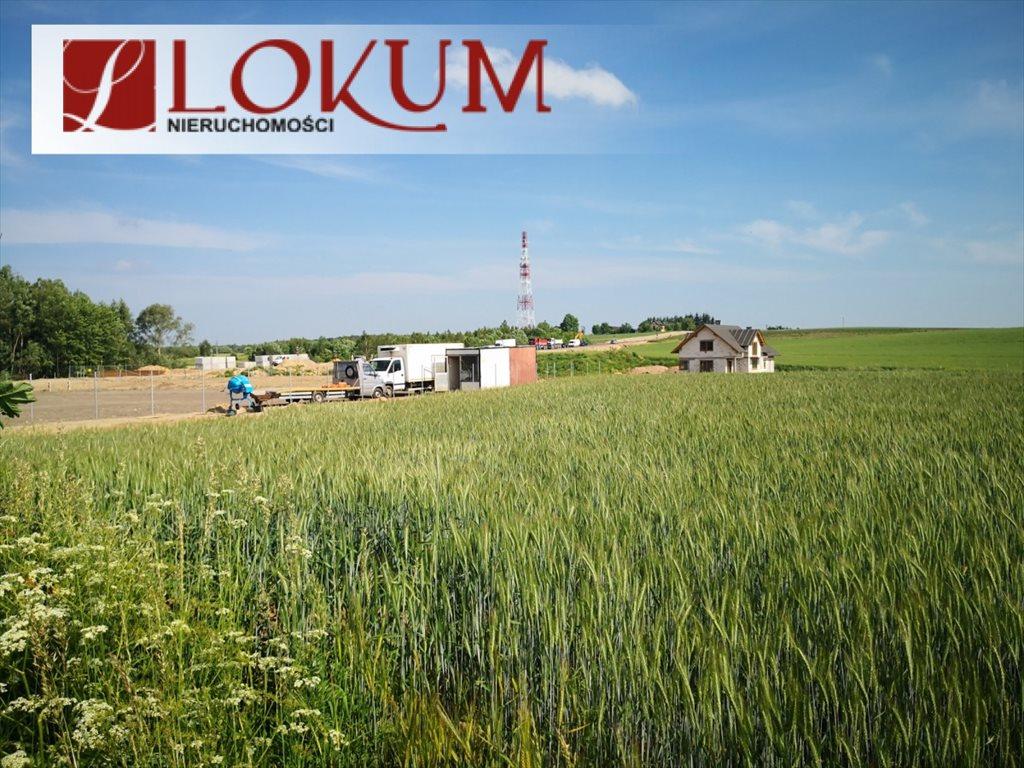 Działka przemysłowo-handlowa na sprzedaż Kleszczewo, Jodłowa  15009m2 Foto 2