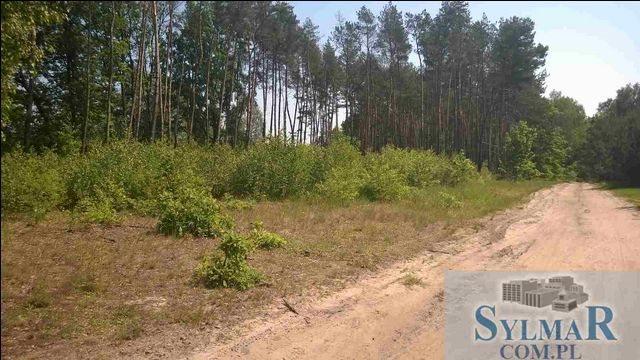 Działka leśna na sprzedaż Góra Kalwaria, Ługówka, Leśna  10488m2 Foto 10
