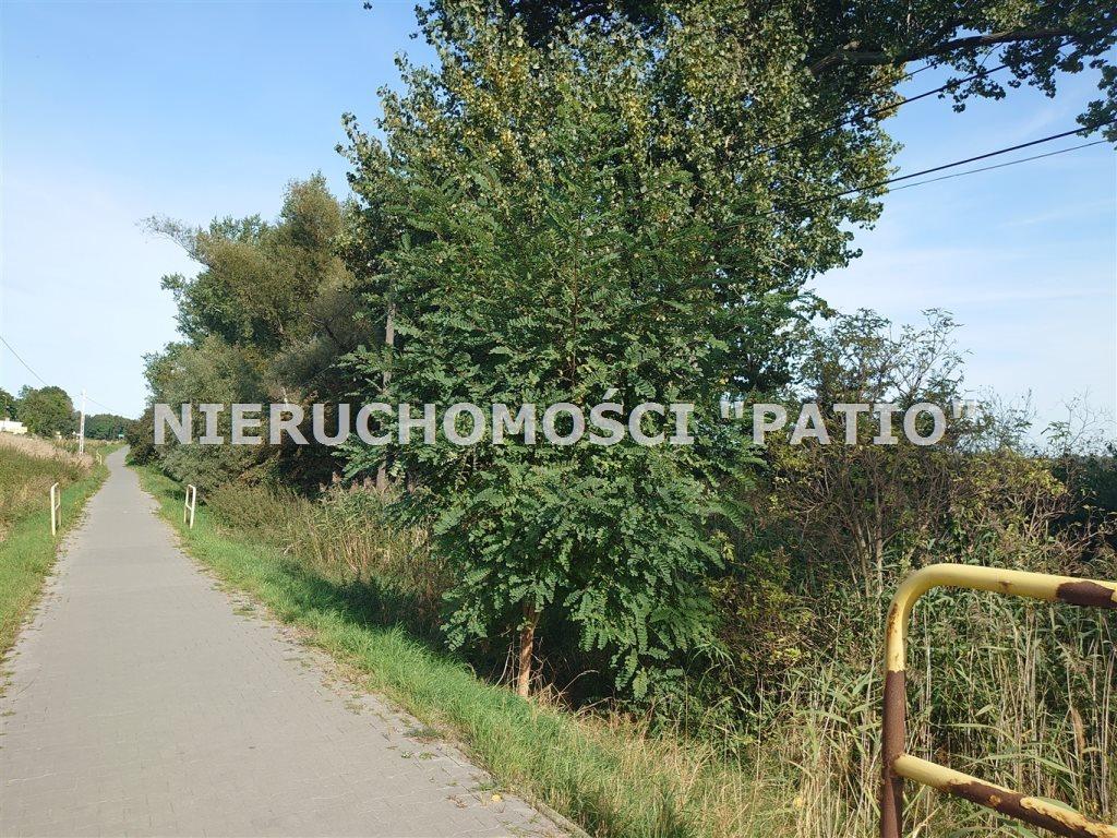 Działka inwestycyjna na sprzedaż Żnin, Bożejewiczki  8500m2 Foto 5