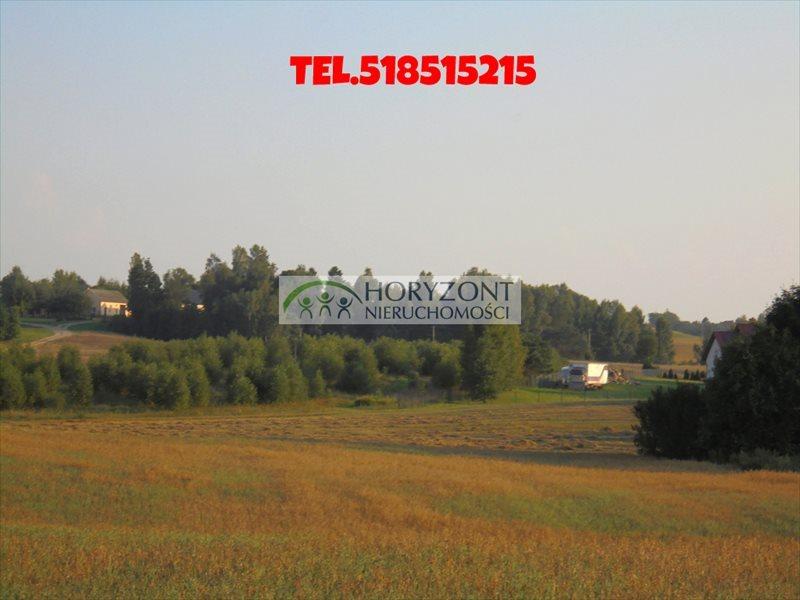 Działka budowlana na sprzedaż Łebno  2999m2 Foto 1