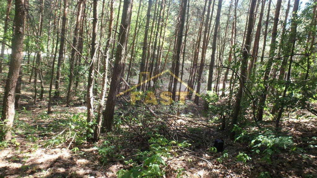 Działka leśna na sprzedaż Otwock  1262m2 Foto 2