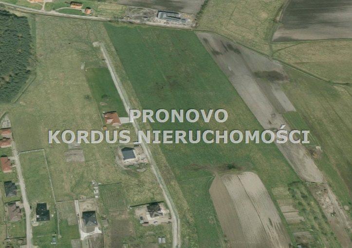 Działka budowlana na sprzedaż Wołczkowo  3001m2 Foto 2