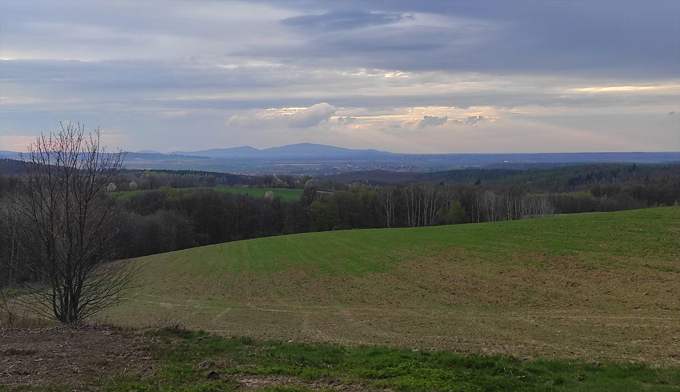 Działka siedliskowa na sprzedaż Przeworno, Romanów, Na Południe od Wrocławia  33558m2 Foto 1