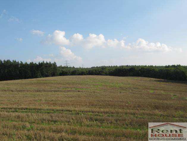 Działka komercyjna na sprzedaż Czepino  57500m2 Foto 8