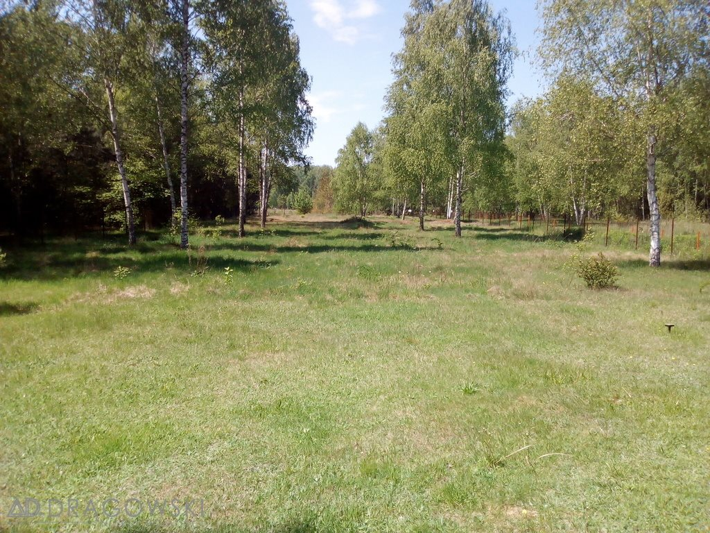Dom na sprzedaż Mirowice  72m2 Foto 3