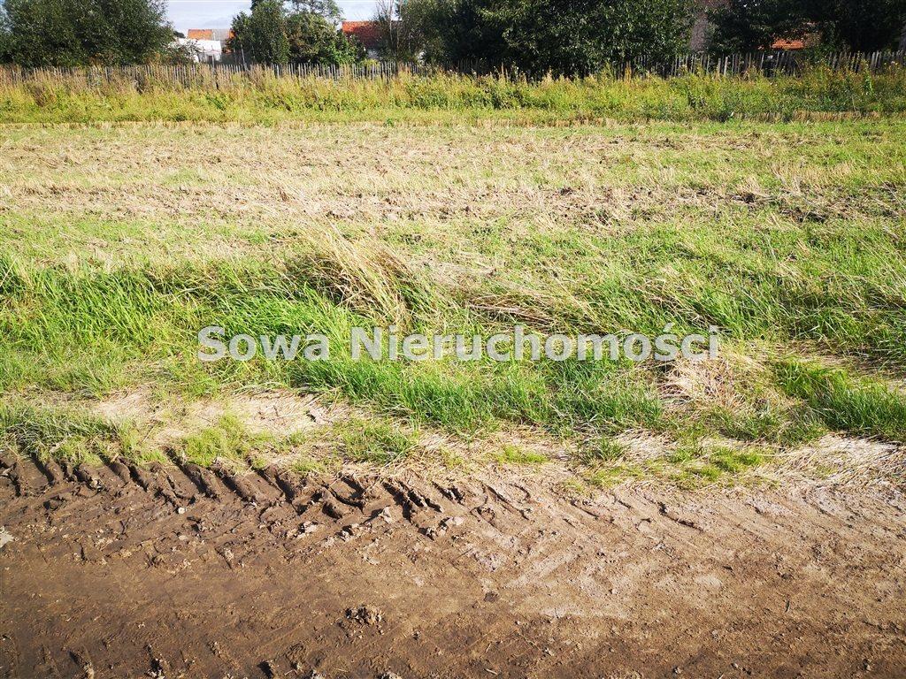 Działka budowlana na sprzedaż Świebodzice, Ciernie  1000m2 Foto 4