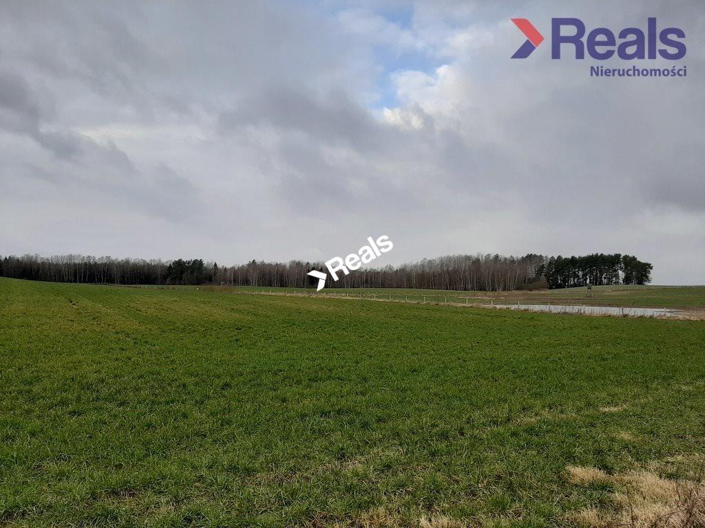 Działka rolna na sprzedaż Bieniewo  100000m2 Foto 2