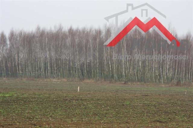 Działka budowlana na sprzedaż Święcice, W pobliżu Ożarowa Mazowieckiego  1200m2 Foto 4