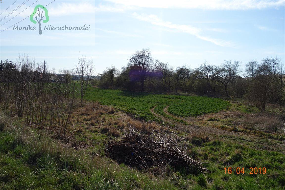 Działka budowlana na sprzedaż Tczew, Czatkowska  12999m2 Foto 5