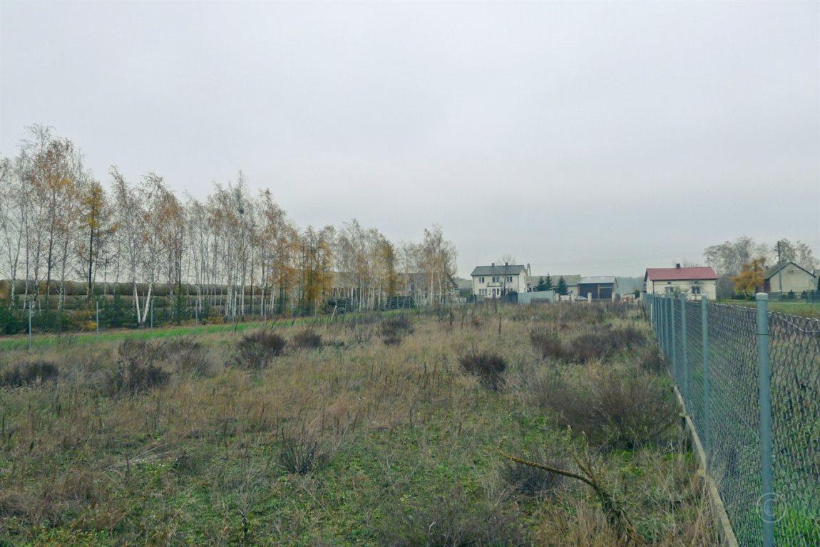 Działka inna na sprzedaż Bielawska Wieś  2100m2 Foto 5