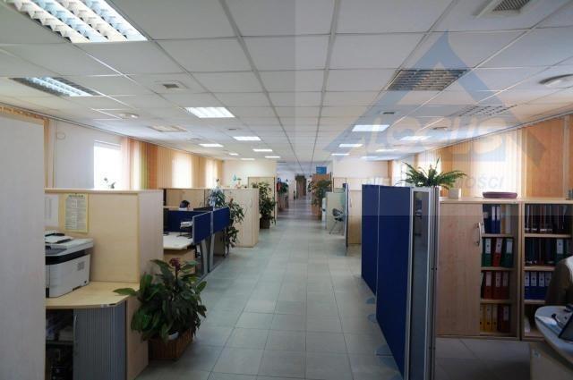 Lokal użytkowy na sprzedaż Raszyn  1756m2 Foto 12