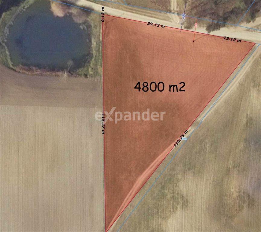 Działka rolna na sprzedaż Potrzanowo  4800m2 Foto 4