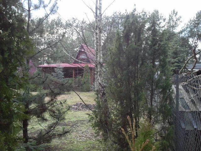 Dom na sprzedaż Łosie  35m2 Foto 3
