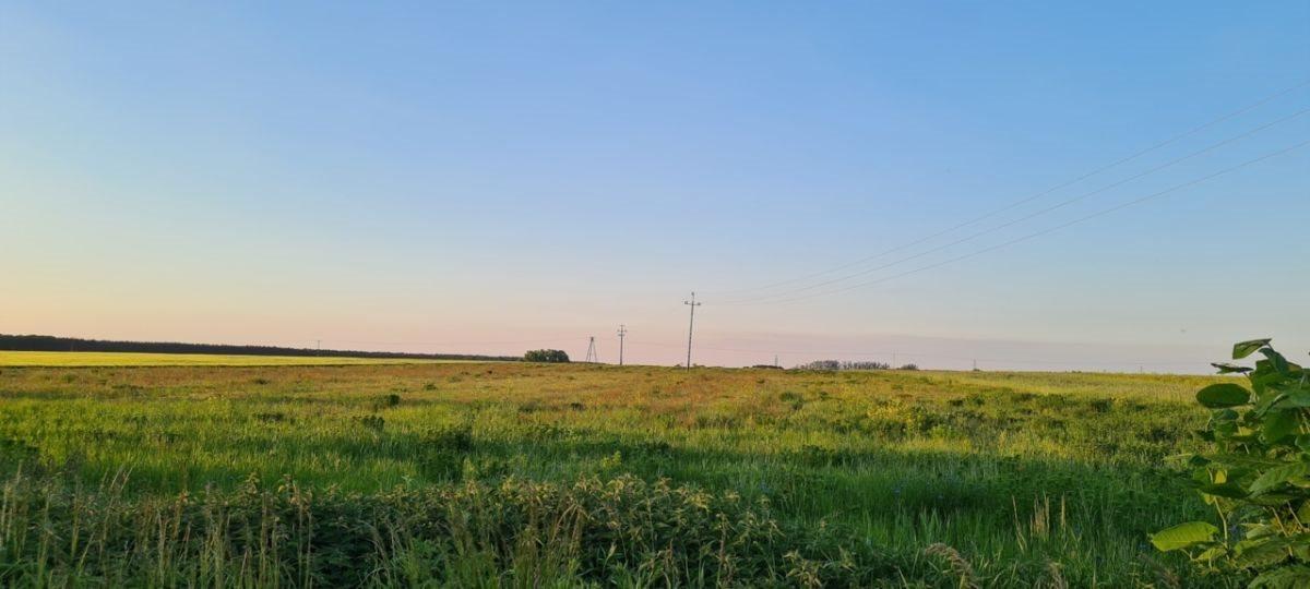 Działka rolna na sprzedaż Ratowice  24400m2 Foto 3