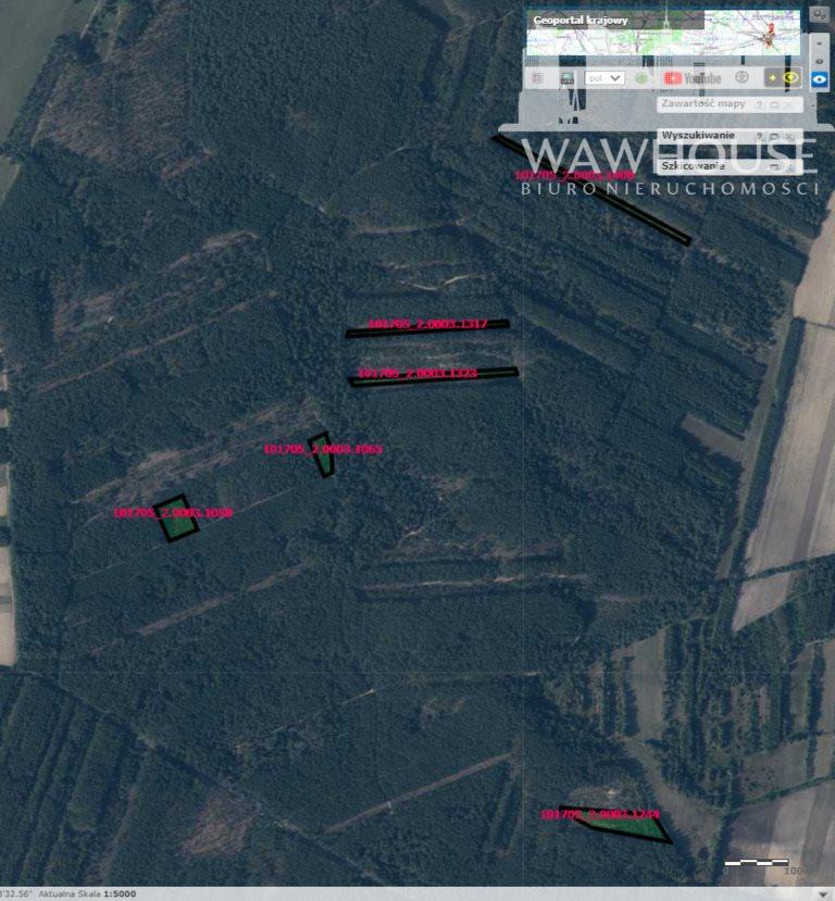 Działka leśna na sprzedaż Czernice  23500m2 Foto 1