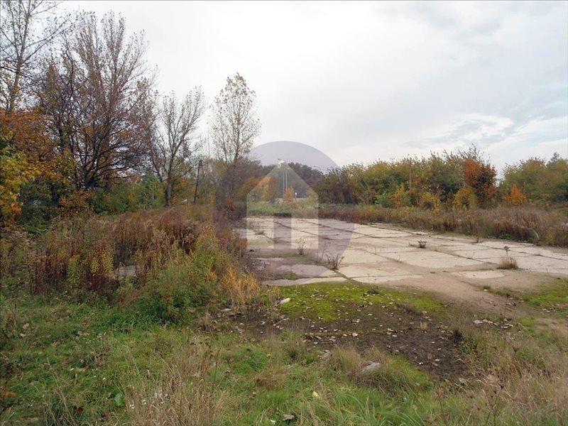 Działka przemysłowo-handlowa na sprzedaż Legnica  5558m2 Foto 4