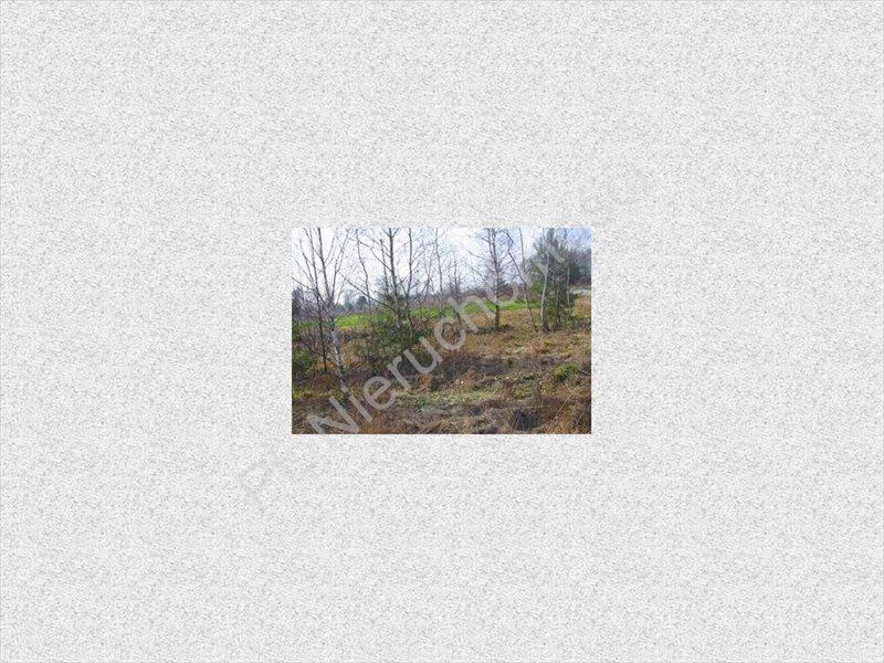 Działka rolna na sprzedaż Stanisławów  11100m2 Foto 5