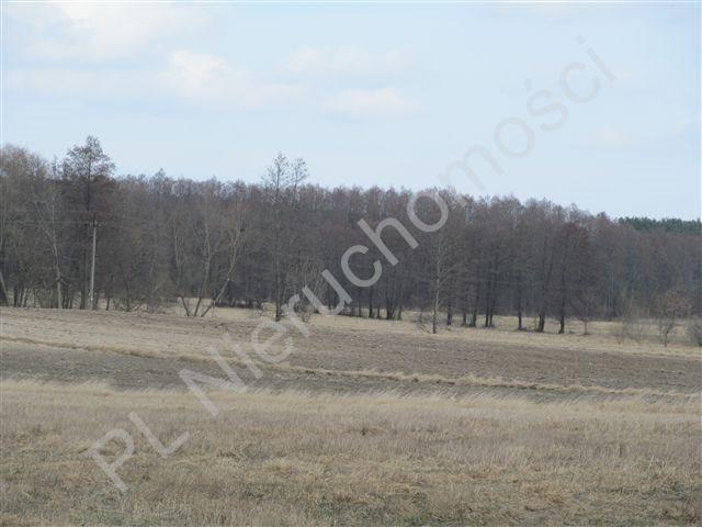 Działka rolna na sprzedaż Transbór  11200m2 Foto 7