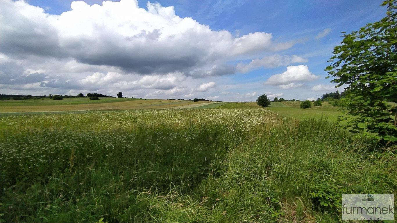 Działka rolna na sprzedaż Stanisławów  16962m2 Foto 2