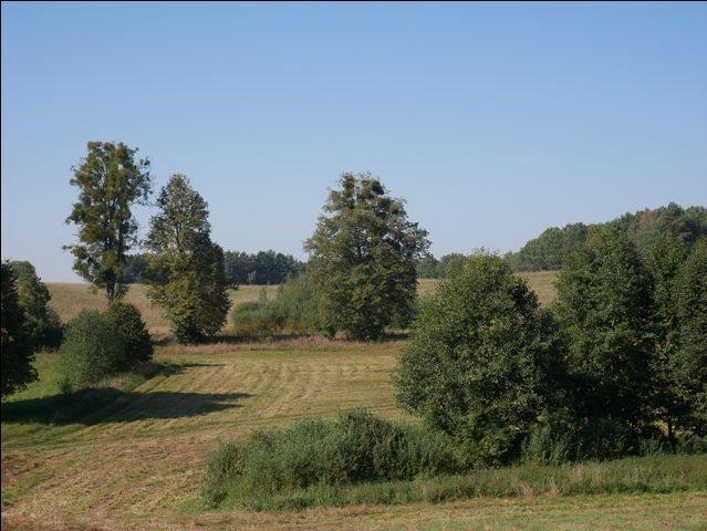 Działka rolna na sprzedaż Skolity  97248m2 Foto 12
