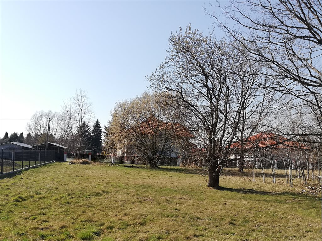 Lokal użytkowy na sprzedaż Krosno, Długa 15d  880m2 Foto 4