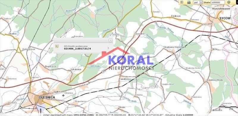 Działka przemysłowo-handlowa na sprzedaż Ostrowina, Ostrowina  4000m2 Foto 3