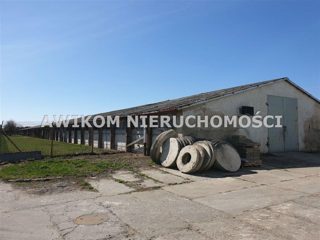 Lokal użytkowy na sprzedaż Teresin  6975m2 Foto 11