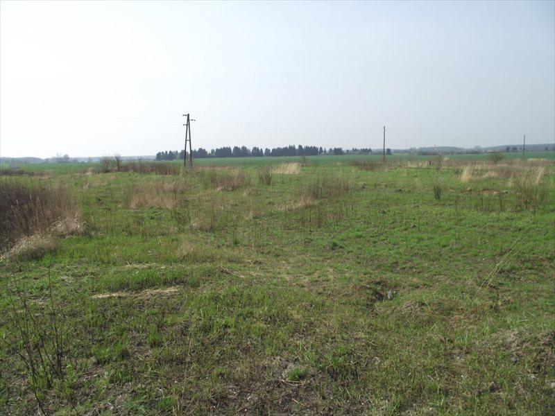 Działka budowlana na sprzedaż Kije  76000m2 Foto 3