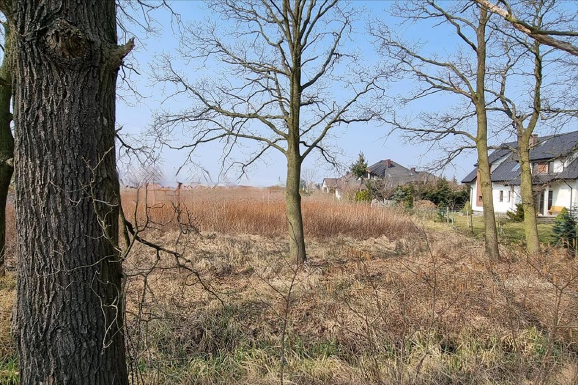 Działka rolna na sprzedaż Wilkszyn, Miękinia  738m2 Foto 3