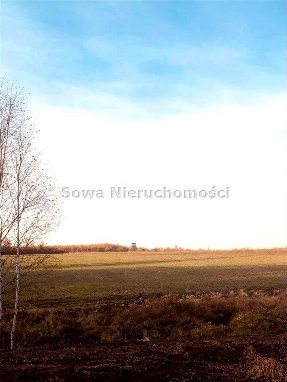 Działka inna na sprzedaż Świebodzice, Pełcznica  40600m2 Foto 1