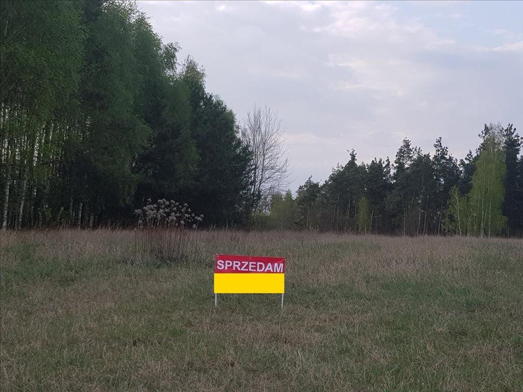 Działka rolna na sprzedaż Kosewo, Nasielsk  2000m2 Foto 6