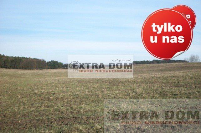 Działka rolna na sprzedaż Żabowo  16020m2 Foto 1
