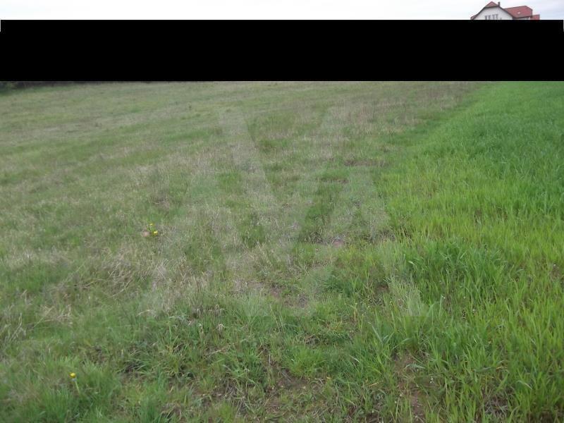 Działka siedliskowa na sprzedaż Trąbki Małe, Las, Polna  3800m2 Foto 1