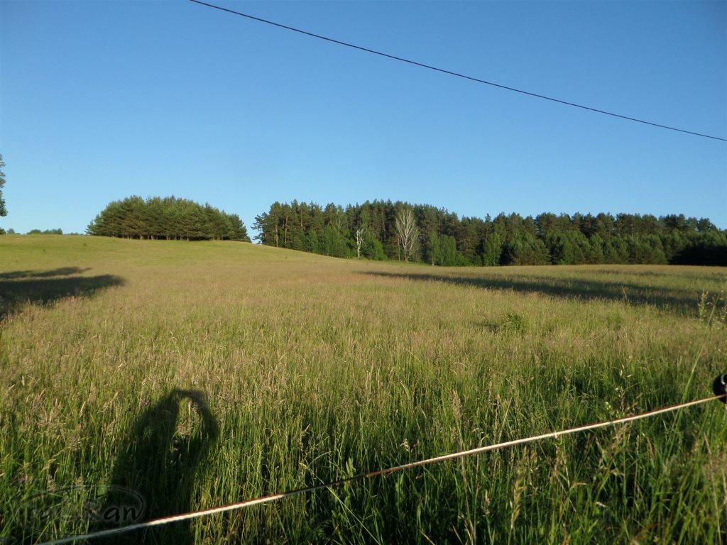 Działka rolna na sprzedaż Stare Kawkowo  3206m2 Foto 6