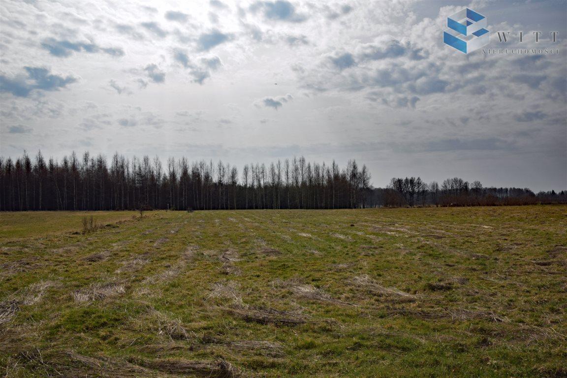 Działka rolna na sprzedaż Morąg, Kudypy  5200m2 Foto 2