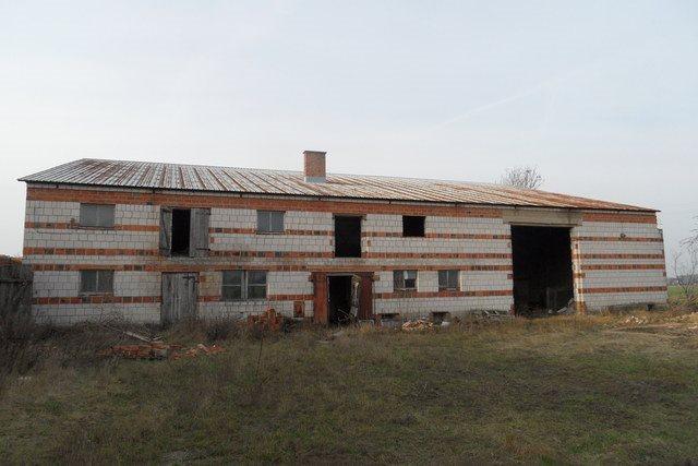 Działka budowlana na sprzedaż Olsza  12000m2 Foto 12