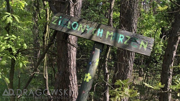 Działka leśna na sprzedaż Wilga  5369m2 Foto 1