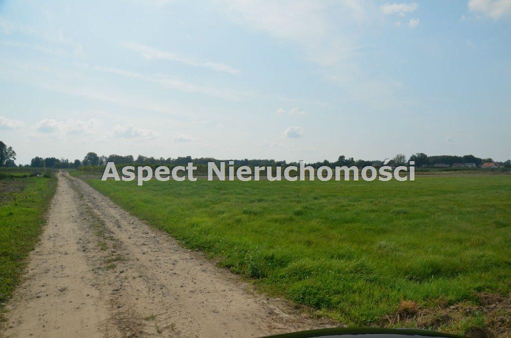 Działka inna na sprzedaż Wyszków, Olszanka  5900m2 Foto 1