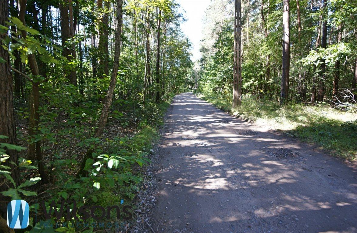 Działka leśna na sprzedaż Władysławów  10551m2 Foto 3
