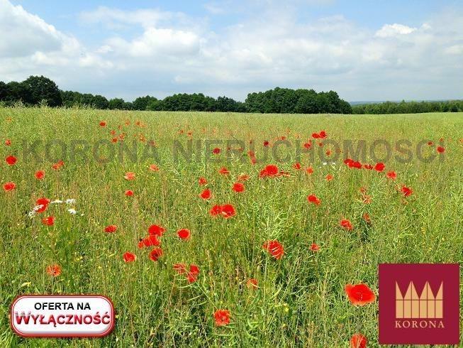 Działka rolna na sprzedaż Adamowice  51000m2 Foto 1
