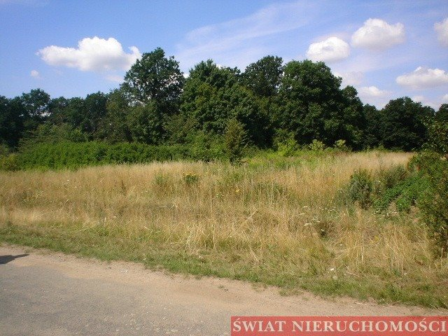 Działka rolna na sprzedaż Księginice  5700m2 Foto 6