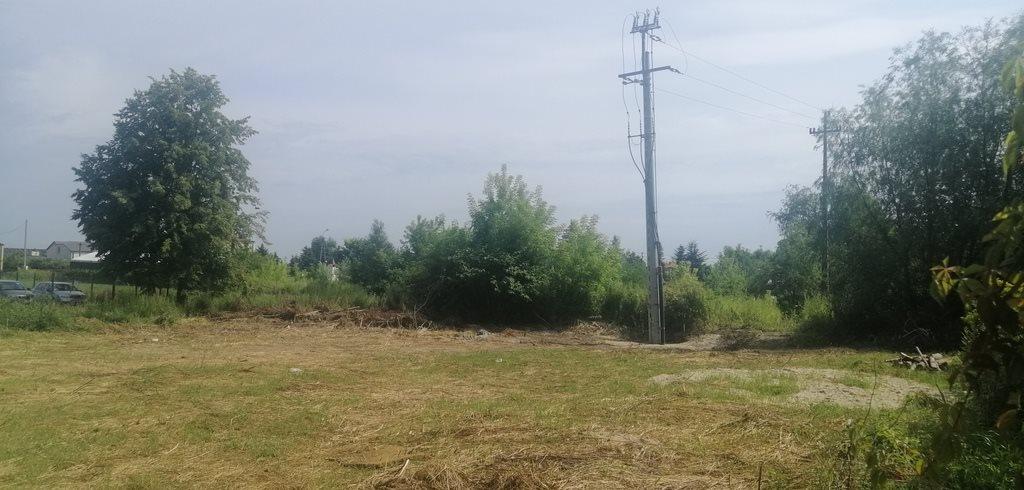 Działka budowlana na sprzedaż Wojcieszyn  1100m2 Foto 6
