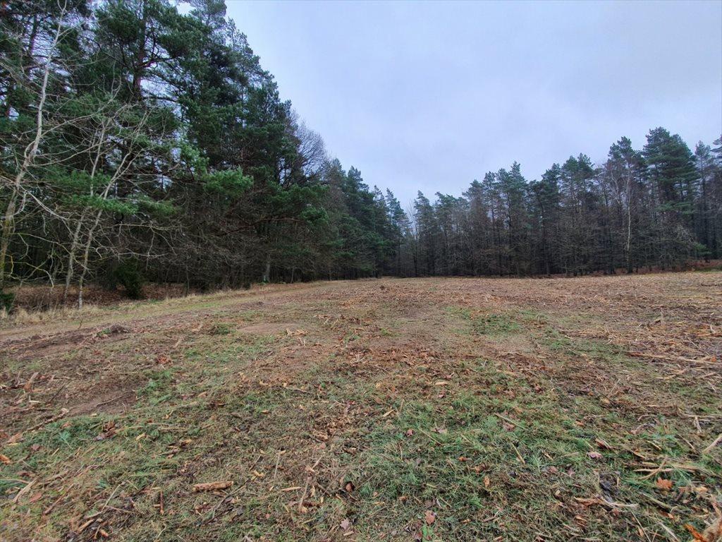 Działka rolna na sprzedaż Donimierz, Mgieł Porannych  3004m2 Foto 6